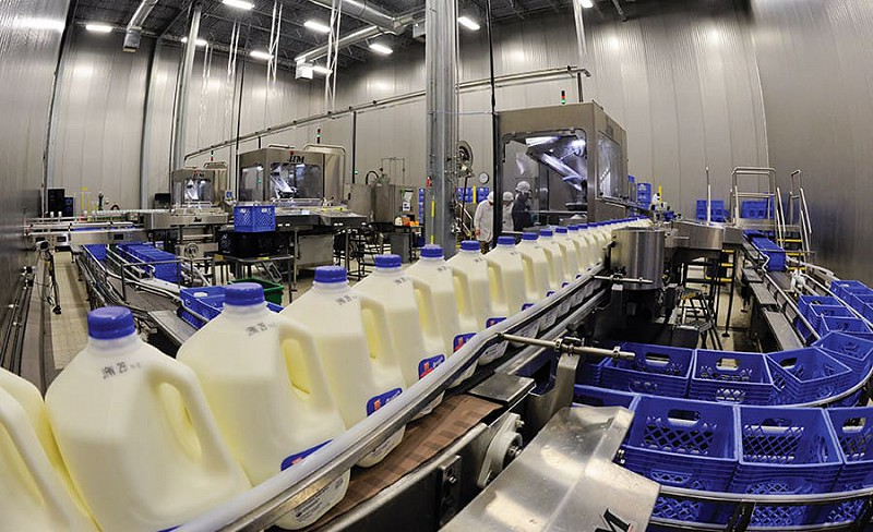 Dairy Factories